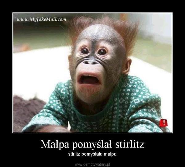 Małpa pomyślał stirlitz – stirlitz pomyślała małpa