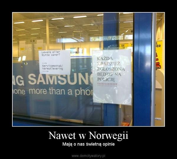 Nawet w Norwegii – Mają o nas świetną opinie