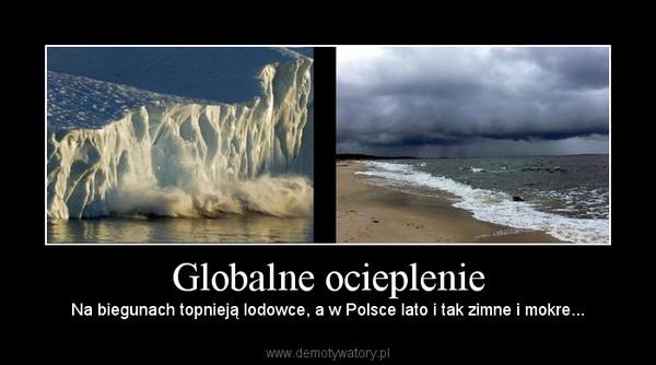 Globalne ocieplenie – Na biegunach topnieją lodowce, a w Polsce lato i tak zimne i mokre...