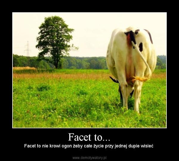 Facet to... – Facet to nie krowi ogon żeby całe życie przy jednej dupie wisieć