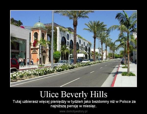Ulice Beverly Hills –  Tutaj uzbierasz więcej pieniędzy w tydzień jako bezdomny niż w Polsce zanajniższą pensję w miesiąc.