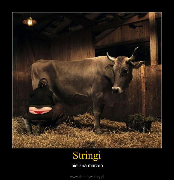 Stringi – bielizna marzeń