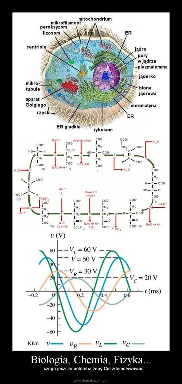 Biologia, Chemia, Fizyka... – ... czego jeszcze potrzeba żeby Cie zdemotywować
