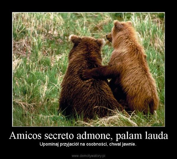 Amicos secreto admone, palam lauda – Upominaj przyjaciół na osobności, chwal jawnie.