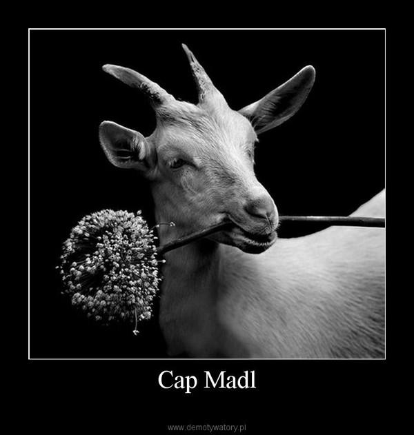 Cap Madl –