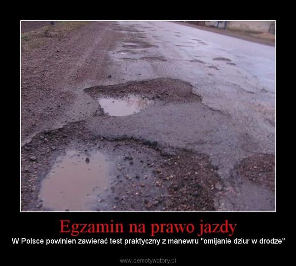 """Egzamin na prawo jazdy – W Polsce powinien zawierać test praktyczny z manewru """"omijanie dziur w drodze"""""""