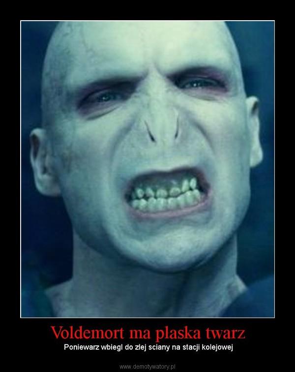 Voldemort ma plaska twarz – Poniewarz wbiegl do zlej sciany na stacji kolejowej
