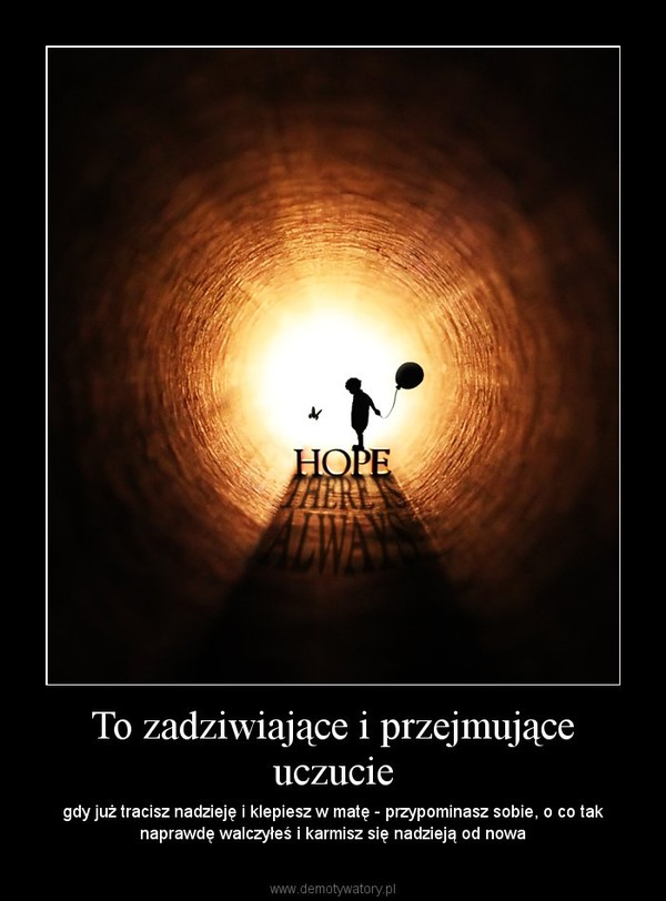 To zadziwiające i przejmujące uczucie – gdy już tracisz nadzieję i klepiesz w matę - przypominasz sobie, o co tak naprawdę walczyłeś i karmisz się nadzieją od nowa