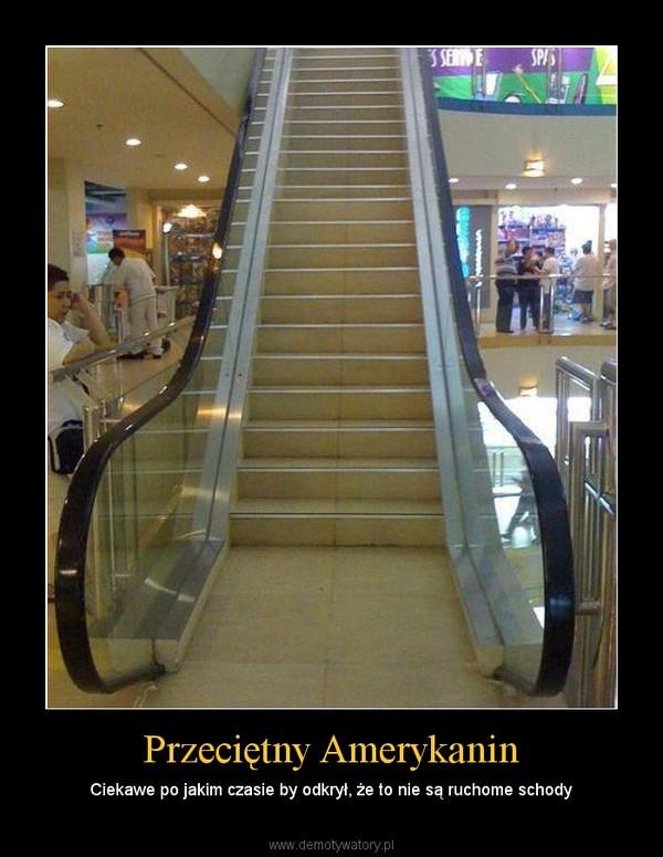 Przeciętny Amerykanin – Ciekawe po jakim czasie by odkrył, że to nie są ruchome schody