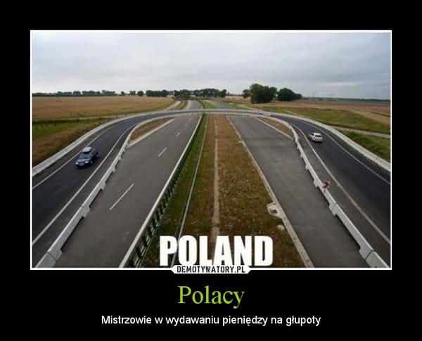 Polacy – Mistrzowie w wydawaniu pieniędzy na głupoty