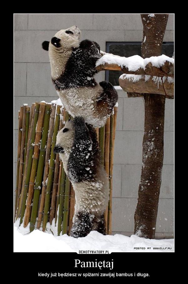 Pamiętaj – kiedy już będziesz w spiżarni zawijaj bambus i długa.