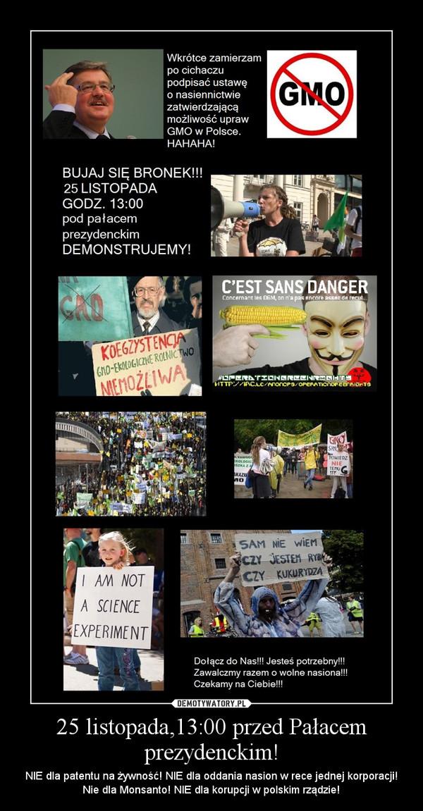 25 listopada,13:00 przed Pałacem prezydenckim! – NIE dla patentu na żywność! NIE dla oddania nasion w rece jednej korporacji! Nie dla Monsanto! NIE dla korupcji w polskim rządzie!
