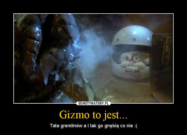 Gizmo to jest... – Tata gremlinów a i tak go gnębią co nie :(