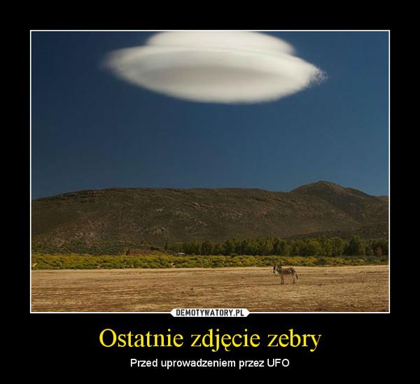 Ostatnie zdjęcie zebry – Przed uprowadzeniem przez UFO