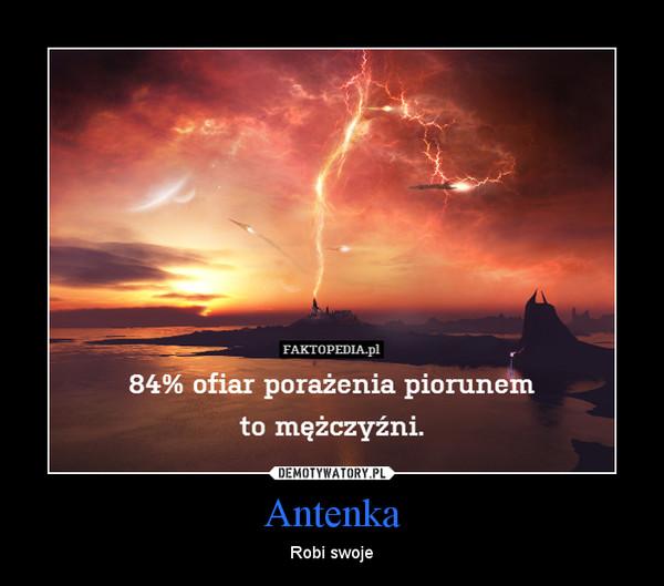 Antenka – Robi swoje