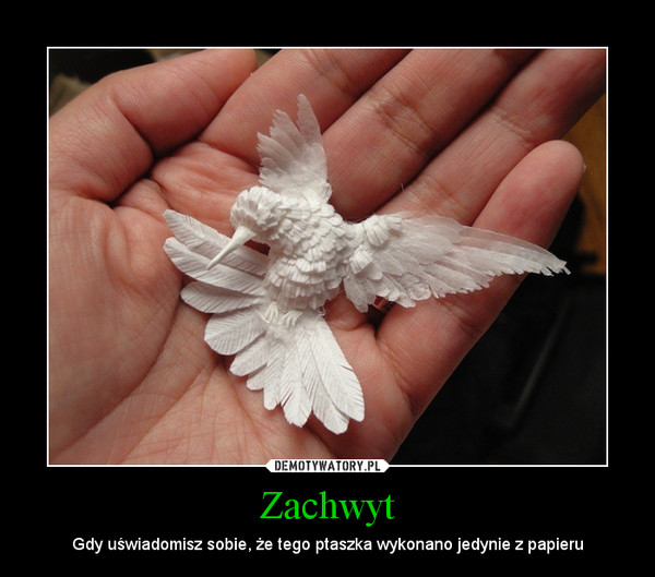 Zachwyt – Gdy uświadomisz sobie, że tego ptaszka wykonano jedynie z papieru