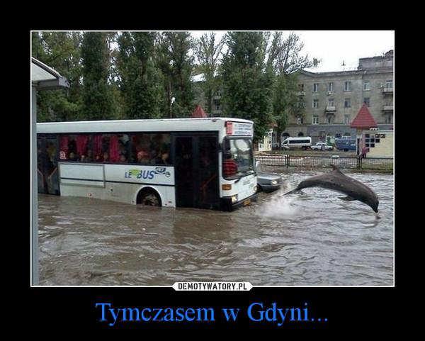 Tymczasem w Gdyni... –