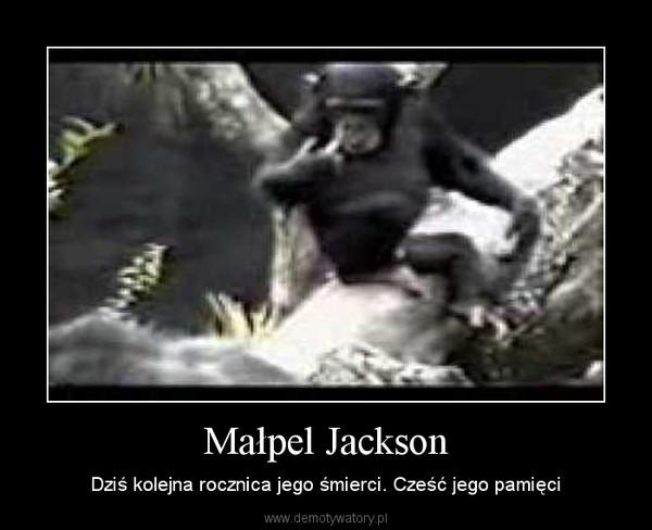 Małpel Jackson – Dziś kolejna rocznica jego śmierci. Cześć jego pamięci