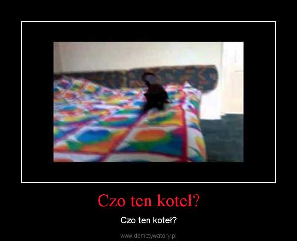 Czo ten koteł? – Czo ten koteł?