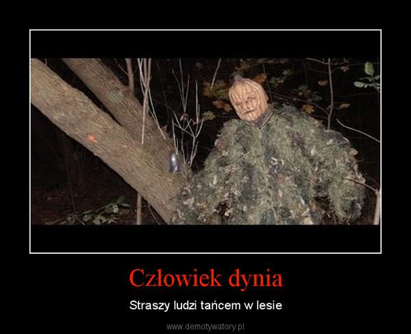 Człowiek dynia – Straszy ludzi tańcem w lesie