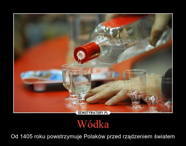Wódka – Od 1405 roku powstrzymuje Polaków przed rządzeniem światem