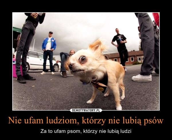Nie ufam ludziom, którzy nie lubią psów – Za to ufam psom, którzy nie lubią ludzi