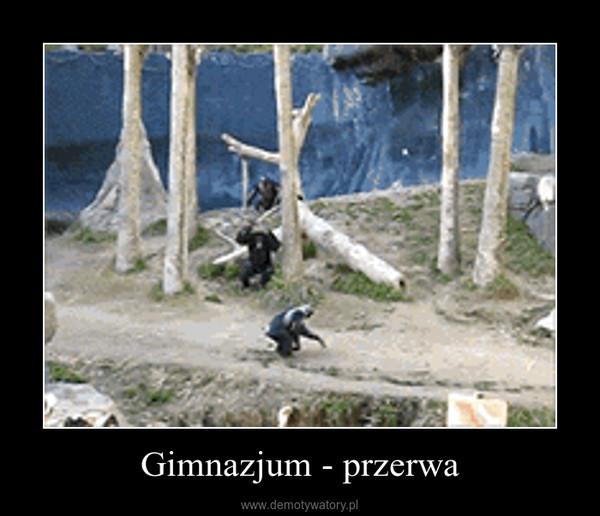 Gimnazjum - przerwa –