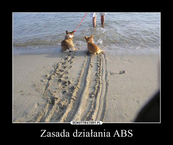 Zasada działania ABS –