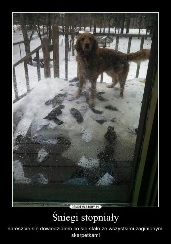 Śniegi stopniały – nareszcie się dowiedziałem co się stało ze wszystkimi zaginionymi skarpetkami