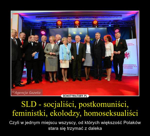 SLD - socjaliści, postkomuniści, feministki, ekolodzy, homoseksualiści – Czyli w jednym miejscu wszyscy, od których większość Polaków stara się trzymać z daleka