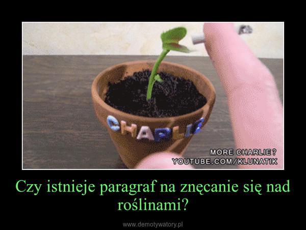 Czy istnieje paragraf na znęcanie się nad roślinami? –
