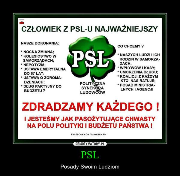 PSL – Posady Swoim Ludziom