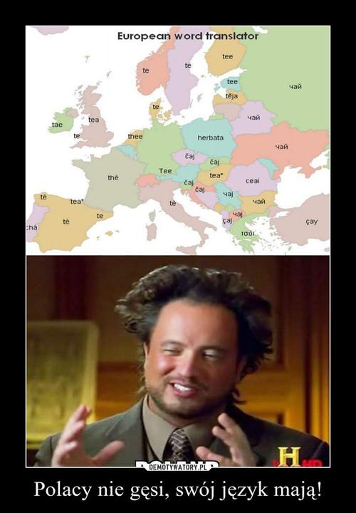 Polacy nie gęsi, swój język mają!
