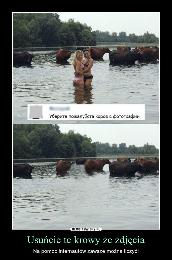 Usuńcie te krowy ze zdjęcia – Na pomoc internautów zawsze można liczyć!