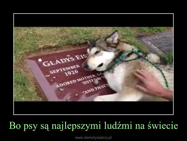 Bo psy są najlepszymi ludźmi na świecie –