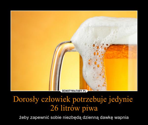 Dorosły człowiek potrzebuje jedynie 26 litrów piwa – żeby zapewnić sobie niezbędą dzienną dawkę wapnia