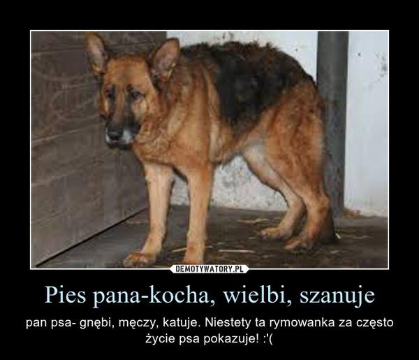 Pies pana-kocha, wielbi, szanuje – pan psa- gnębi, męczy, katuje. Niestety ta rymowanka za często życie psa pokazuje! :'(