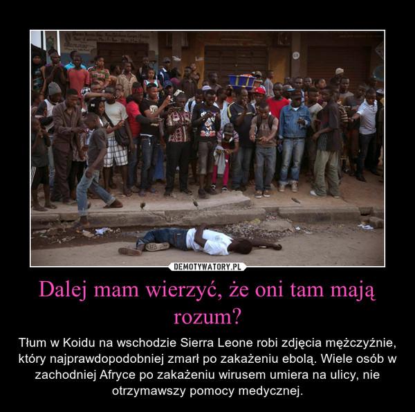 Dalej mam wierzyć, że oni tam mają rozum? – Tłum w Koidu na wschodzie Sierra Leone robi zdjęcia mężczyźnie, który najprawdopodobniej zmarł po zakażeniu ebolą. Wiele osób w zachodniej Afryce po zakażeniu wirusem umiera na ulicy, nie otrzymawszy pomocy medycznej.