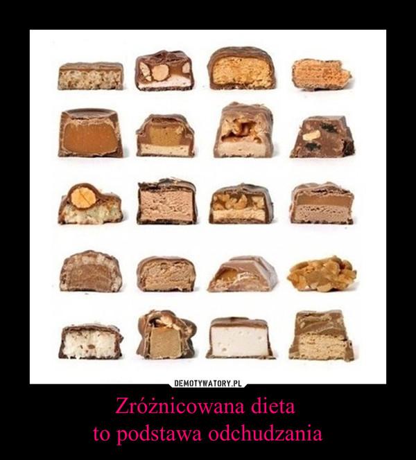 Zróżnicowana dieta to podstawa odchudzania –