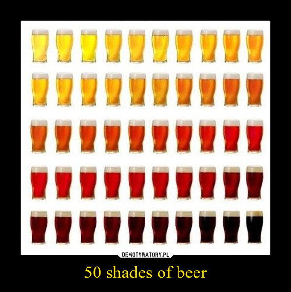 50 shades of beer –