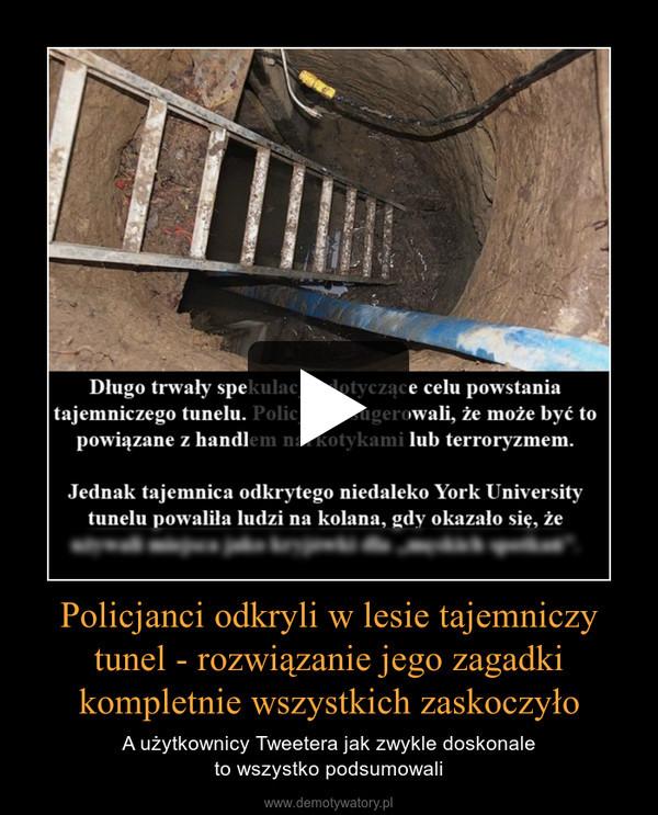 Policjanci odkryli w lesie tajemniczy tunel - rozwiązanie jego zagadki kompletnie wszystkich zaskoczyło – A użytkownicy Tweetera jak zwykle doskonaleto wszystko podsumowali