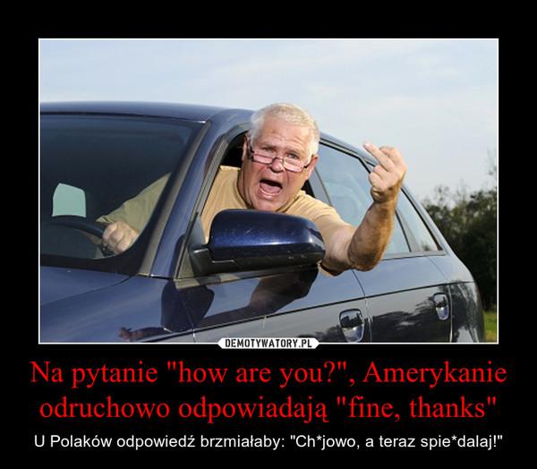 """Na pytanie """"how are you?"""", Amerykanie odruchowo odpowiadają """"fine, thanks"""" – U Polaków odpowiedź brzmiałaby: """"Ch*jowo, a teraz spie*dalaj!"""""""