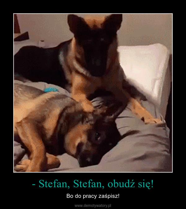 - Stefan, Stefan, obudź się! – Bo do pracy zaśpisz!