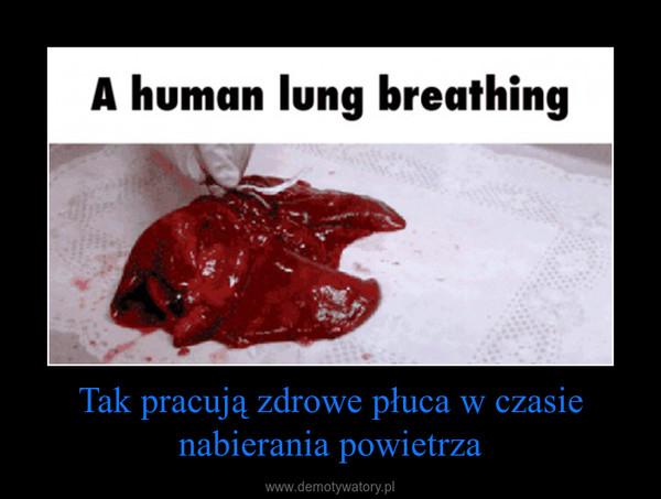 Tak pracują zdrowe płuca w czasie nabierania powietrza –