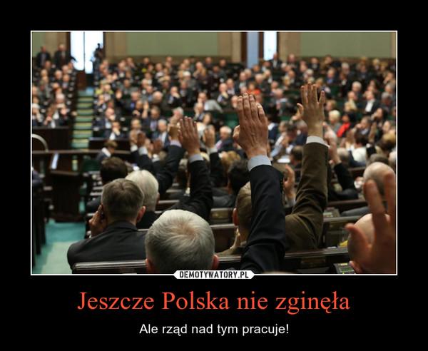 Jeszcze Polska nie zginęła – Ale rząd nad tym pracuje!