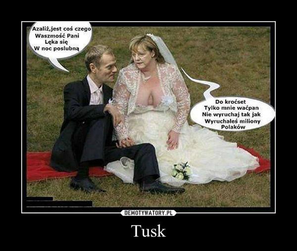 Tusk –