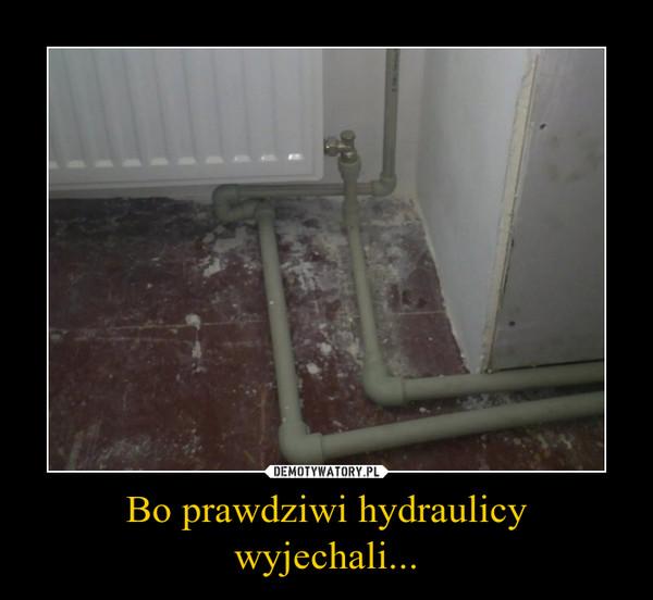 Bo prawdziwi hydraulicy wyjechali... –