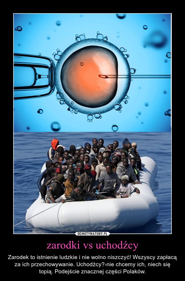 zarodki vs uchodźcy – Zarodek to istnienie ludzkie i nie wolno niszczyć! Wszyscy zapłacą za ich przechowywanie. Uchodźcy?-nie chcemy ich, niech się topią. Podejście znacznej części Polaków.