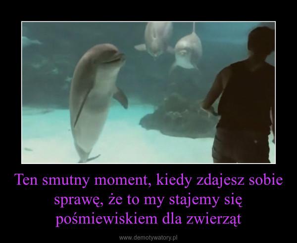 Ten smutny moment, kiedy zdajesz sobie sprawę, że to my stajemy się pośmiewiskiem dla zwierząt –