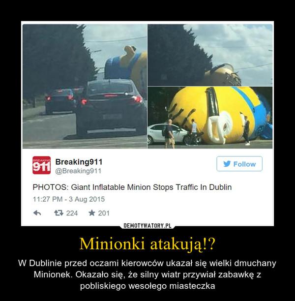 Minionki atakują!? – W Dublinie przed oczami kierowców ukazał się wielki dmuchany Minionek. Okazało się, że silny wiatr przywiał zabawkę z pobliskiego wesołego miasteczka